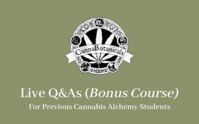 Live Q&As